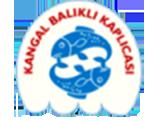 Kangal_Fish_Spring_lg2